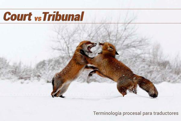 court o tribunal | Traducción jurídica y jurada de inglés a español