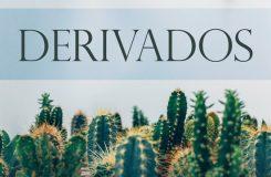 Derivados | Traducción jurídica de inglés a español